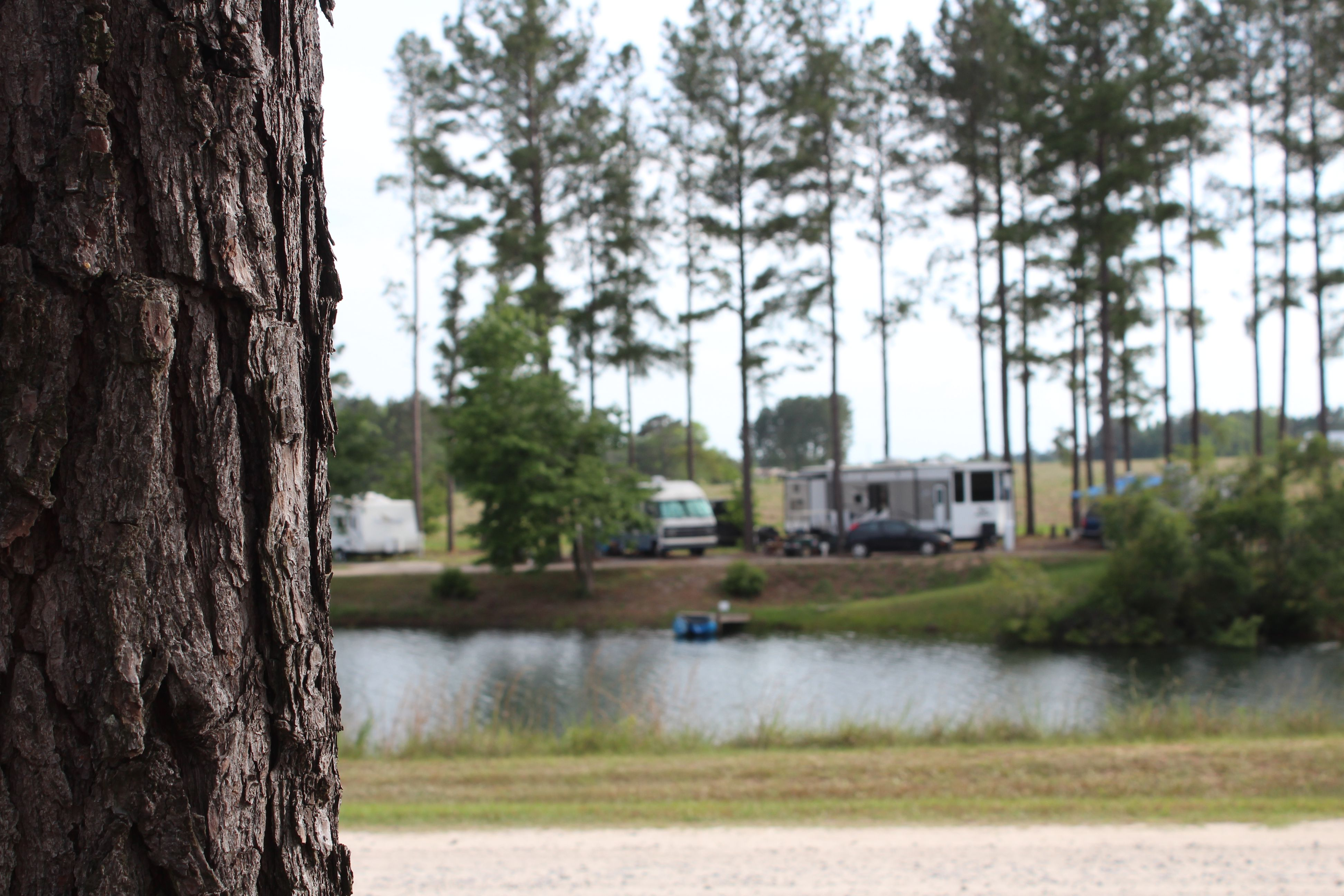 We hope you enjoy your stay at our beautiful Georgia RV Park!