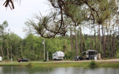 RV sites facing the lake