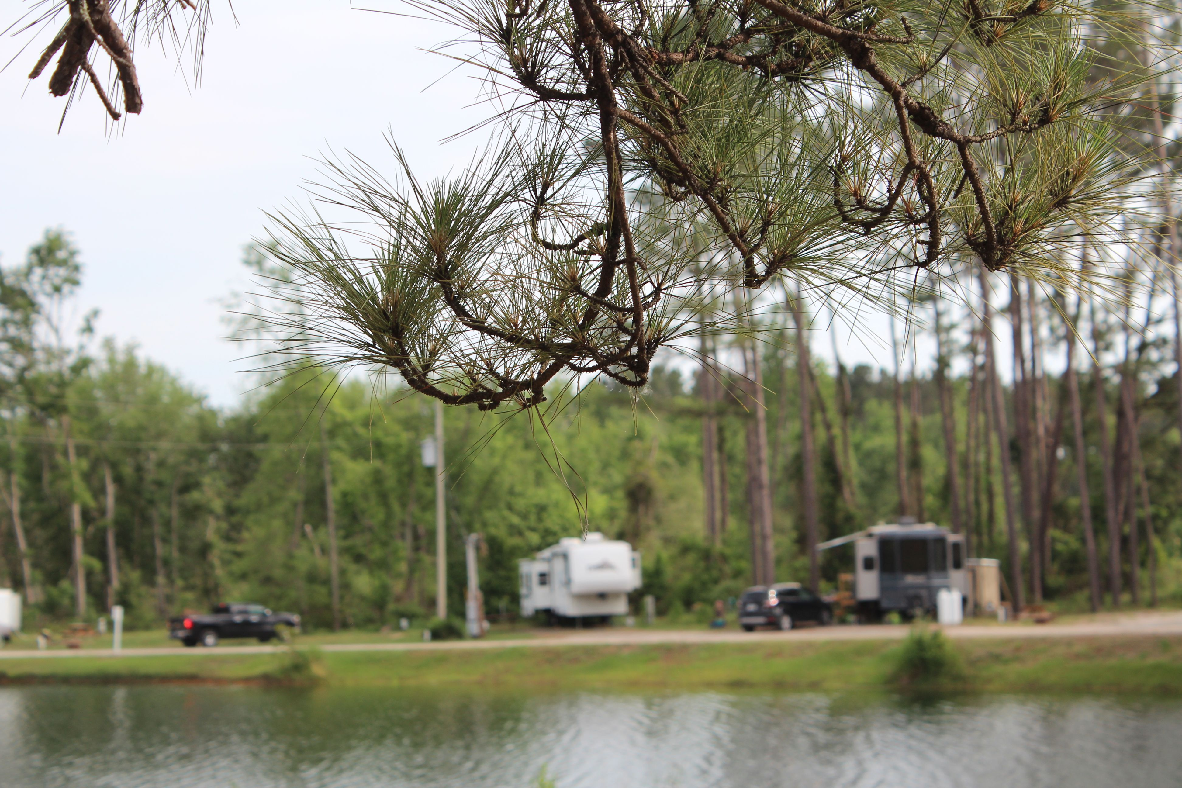 RV sites facing the lake